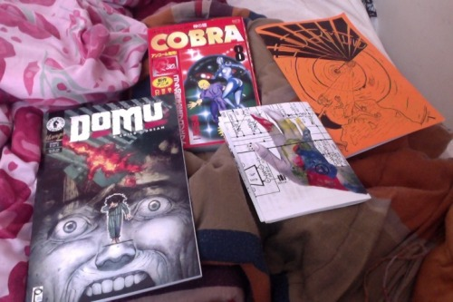suffervacation:  From Frank Santoro's comic sale I bought Domu.  AD gifted me the Cobra book.  Trades from Olivia Fox and Christopher Green.
