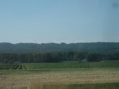 Hills and farmland New York