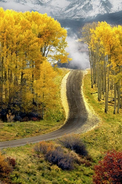 bluepueblo:  Aspen Road, Boulder, Colorado photo via michelle