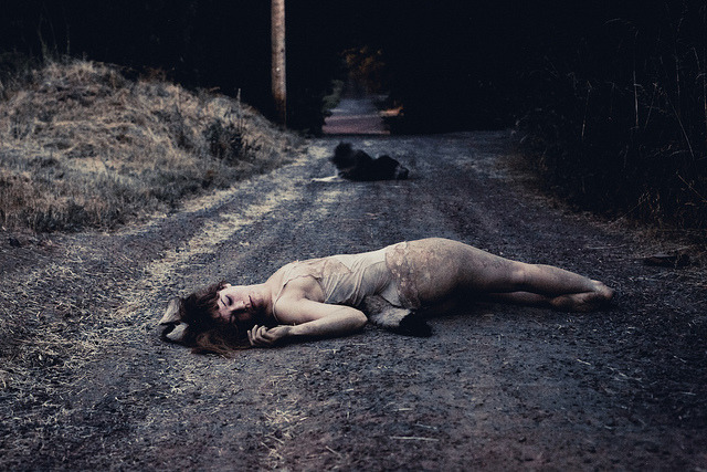 roadkill by Alejandra Maria on Flickr.