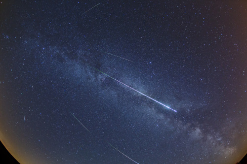synmirror:  Perseids traveling along the Milky Way - by Jens Hackmann (via Perseid Meteor 2012) edit: click the picture for the amazing full size version