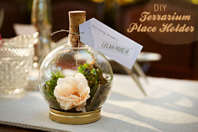 diyheartsandcrafts:  DIY Terrarium Place Holder