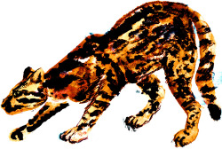 ocelot hunts. watercolors/pens/multimedia. brendan garbee