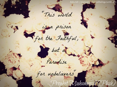 Prison Submitted by Aisha Adil