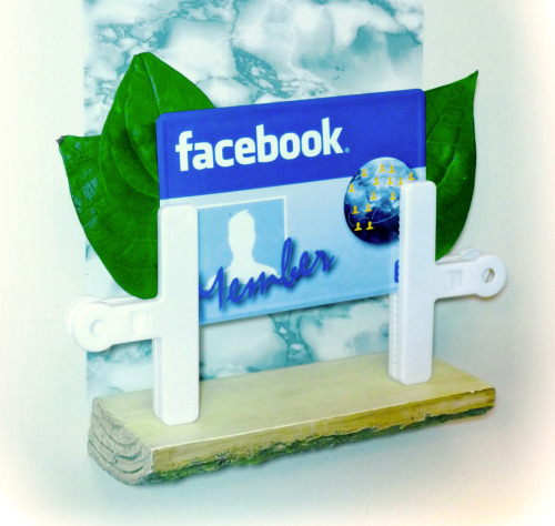 Facebook MEMBER license plate with bitterleaves, displayed with chip-clips, 2012 Sculpture Ω™