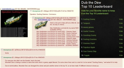 4chanscreencaps:  This is going right now!  Keep voting! dubthedew.com/gallery-of-names  Yesssss, vote fapple