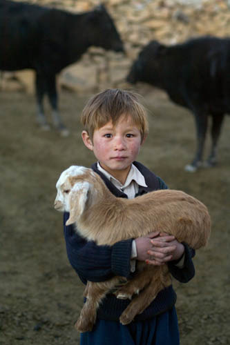 Hazara boy and his goat, Bamiyan Province, Afghanistan.