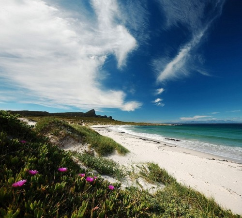 Beach at Buffels Bay, Cape Peninsula, South Africa. Praia em Buffels Bay, Península do   Cabo, África do Sul. Photo copyright: André van Rooyen