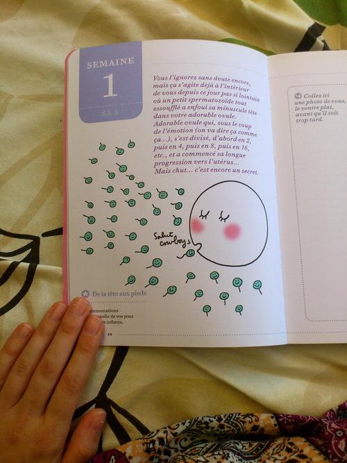 j'ai testé : Le cahier grossesse des paresseuses  j'ai testé : Le cahier grossesse des paresseuses  j'ai testé : Le cahier grossesse des paresseuses