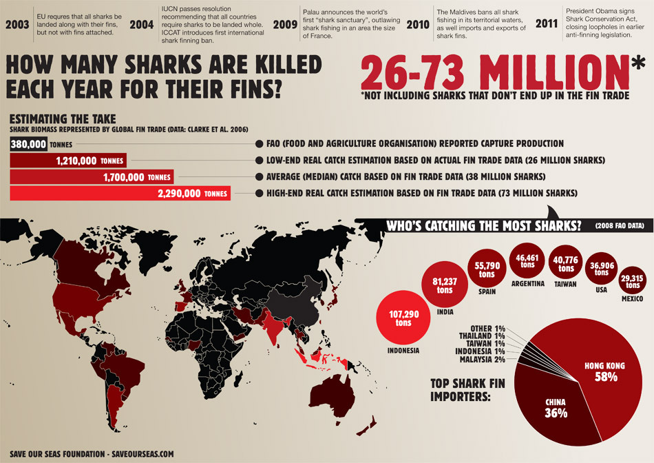 unitedbyblue:   How Many Sharks Are Caught Each Year? Tens of millions of sharks die each year to supply the multi-billion dollar fin trade. But how many exactly, how do we know, and why is it important? Read more