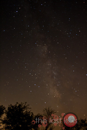 coke71685:  Went out to watch the Perseid Meteor shower.  Didn't catch any meteors on film but I did get part of the Milky Way galaxy (our home galaxy for those that don't know that).