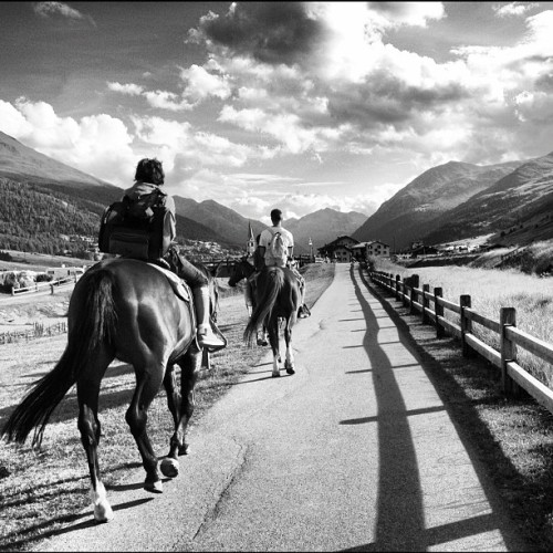 #horses in #livigno , #summer #instamood #instanature  #riding (Taken with Instagram)