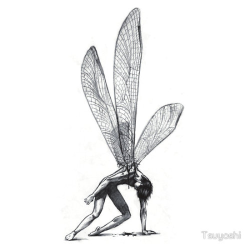 """Dragonfly"" by Tsuyoshi Available as a t-shirt or hoodie, and sticker"