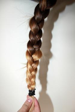 photography hair brunette blonde braid hairstyle dip dye terry richards
