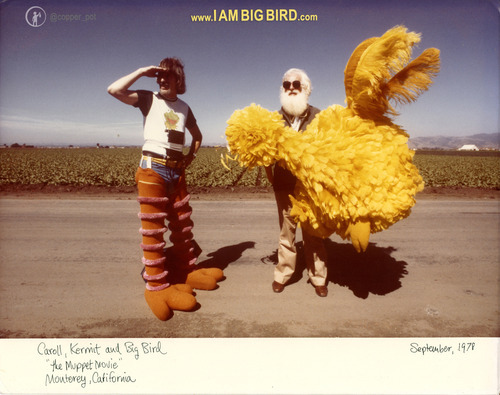 A little bit of time left to donate to the making of I Am Big Bird. http://kck.st/NGQAQl