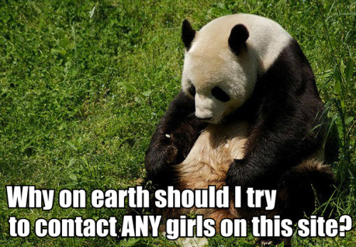 Cheer up! You're a panda, and there is basically not one girl on earth who would turn down a panda.