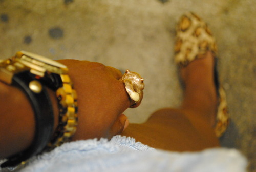 hand.. BOSS MK Leopard Train rides to no where… ride w/me.