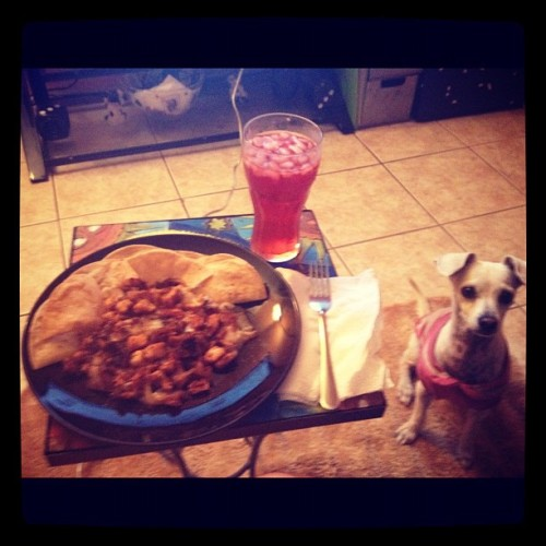 Dinnertime With Izzy. Homemade Chicken Nachos (Taken with Instagram)