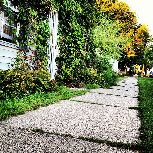 NE Minneapolis #Nord #east #minneapolis #green  (Taken with Instagram at Grumpy's Bar)