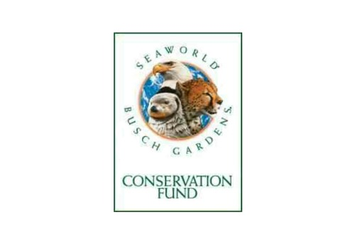 "ilovethewhales:  amusementalmanac:  SeaWorld and Busch Gardens Grants $1.1 million to Wildlife Research and Conservation Since it began the SeaWorld and Busch Gardens Conservation Fund has donated more than $9 million to protect animals and their natural habitats. This years grants worth over $1.1 million will go toward 88 different research and conservation projects around the world. Some of these projects include conserving wild polar bears, helping researchers fix a dramatic decrease in the endangered rockhopper species of penguin and also to restore populations of wild puffins. Along with this fund the SeaWorld and Busch Gardens parks provide a helping hand with zoological staff that works with researchers on these projects. SeaWorld and Busch Gardens together have one of the world's largest animal collections with over 60,000 animals and 200 endangered species. Rescue teams from the parks have helped rescue over 20,000 orphaned, ill or injured animald. All grant funds go toward helping animals and their habitats from natural or human caused catastrophes. To read more on the SeaWorld and Busch Gardens Fund, visit their official Facebook page by CLICKING THE PICTURE ABOVE  one of the reasons SeaWorld is fucking awesome.  SeaWorld and Busch Garden's conservation fund is highly praised by the park's supporters.  How much of a priority is conservation to the multi-billion dollar corporation? The easiest way to find out is to look at the financial report for SeaWorld and Busch Garden's conservation fund and to inquire about where the money is going.  The 2009 annual report for the SeaWorld and Busch Garden's conservation fund is as follows:  Charity events contributed $33,703 Blackstone Entertainment Corporation contributed $109,126 Merchandise contributed $182,734 Park guests contributed $99,806 Institutional contributions totaled $232,310 Internet contributions totaled $88,058 Interest contributions totaled $2,621 Other contributions totaled $33,163 The total amount contributed to the SeaWorld and Busch Garden's conservation fund was $782,372. Blackstone Entertainment corporation donated a measly 22% of the total fund. For a bit of perspective, the corporation reported a revenue of $1.4 billion in that same year.  Where does the money go? The SeaWorld and Busch Garden's conservation fund website states the following, ""A 501, non-profit private foundation, the SeaWorld & Busch Garden's Conservation Fund focuses its resources in four strategic areas: Species Research, Habitat Protection, Animal Rescue and Rehabilitation, and Conservation Education. Since its launch, the Fund has granted over $6 million to more than 500 projects in countries around the world."" The majority of the money that SeaWorld receives goes to organizations other than it's own. Out of $8 million donated to the fund since it's beginning, $6 million has been given to other parks. This leaves a measly $2 million to fund SeaWorld's own conservation efforts.  On top of all of this, many of the conservation funds that SeaWorld donates to are questionable at best.  For example, the majority of the funds going to the Ocean Adventure park come from SeaWorld's very own SeaWorld and Busch Garden's conservation fund. Unfortunately on the Ocean Adventure park's website it states the following, ""Ocean Adventure is home to several species of dolphins, all of whom are rescued animals. Some came from the drive fishery in Japan where they were literally hours away from being slaughtered."" If you'd like to know more about how funding such marine parks stimulates dolphin slaughter you can read my article here. How does SeaWorld and Busch Garden's fund compare to other organizations? Here's a look at the 2009 World Wildlife Fund's annual report: Government grants contributed $33.3 million Foundation contributions totaled $17.9 million Corporate contributions totaled $11.2 million Individual contributions totaled $91.7 million In-kind and other revenue contributions totaled $54.9 million  World Wildlife Fund revenue contributions totaled $12.4 million The total amount contributed to the World Wildlife Fund was $221,354,818. The majority of the money that is donated to the World Wildlife Fund goes directly to protecting and preserving wildlife across the world through their own organization, not to other questionable conservation programs.  If you wish to read examples on instances in which SeaWorld has went against conservation efforts please read these articles: SeaWorld Supports Subsistence Hunts and Captures Wild Penguins, SeaWorld Sells Seafood, SeaWorld Pollutes Mission Bay, SeaWorld's Connection to Cetacean Slaughter, and SeaWorld's Concern for Conservation. After you read some of these articles and consider the information, let me know if your mind has changed about SeaWorld and their Conservation fund being ""awesome."""