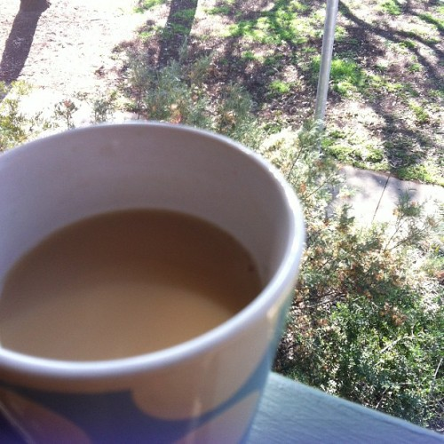 Cup of chai tea and siting outside listening to the brids on this amazing day C: 😊👍☀ #yum #chaitea #outside #realxing #sun #soonice #ahh #green #happy  (Taken with Instagram)