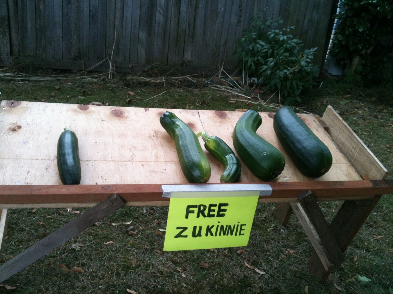 Our funky neighbors giving away their veg.