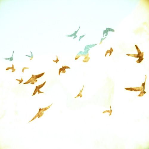 lomographicsociety:  Lomography in Colors - Off Green  Fly away