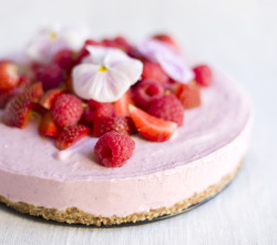 Pink Frozen Cheesecake