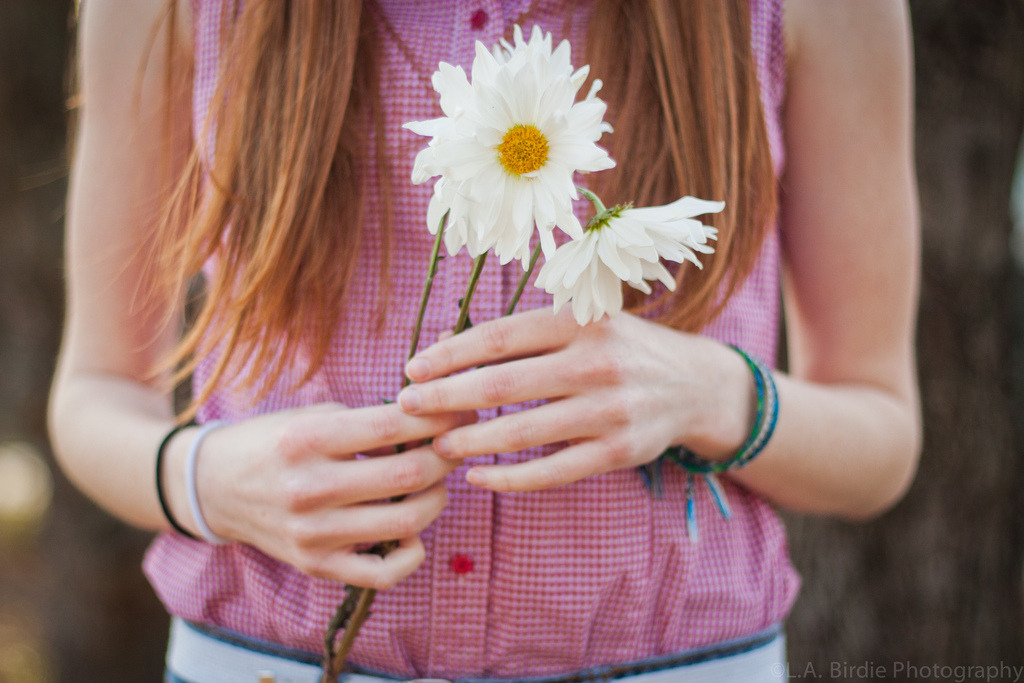 daisy, daisy (by L.A. Birdie Photography)