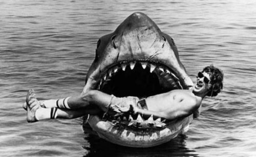 minusmanhattan:  Steven Spielberg on the set of Jaws.