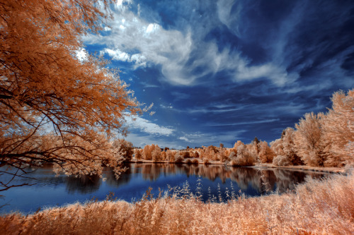 travelingcolors:  Peaceful lake at Stadtweiher in Kempten | Germany (by Thorsten Scheel)  I like these colours