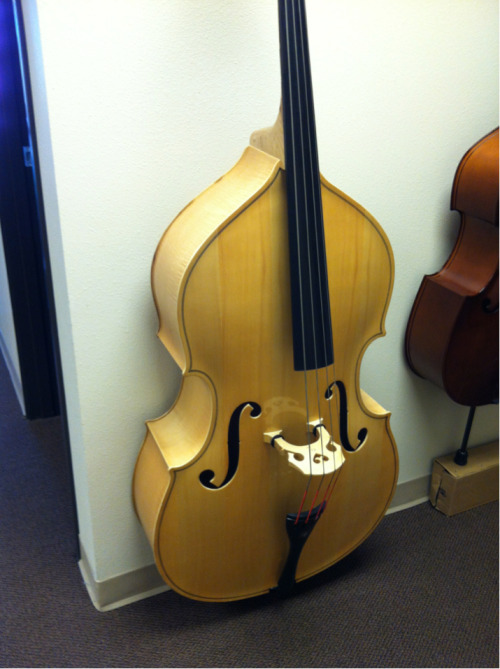 potato321:  Blond contrabass!!!