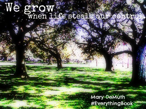 From Everything, an inspirational new book by Mary DeMuth. Just click on the pic to link to the book!