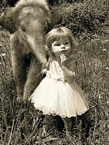 Oh nothing… just exploring with my elephant.
