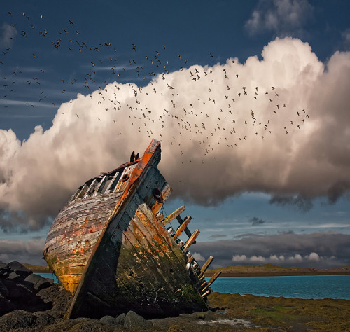 ghost-man-blues:  Shipwreck, Iceland