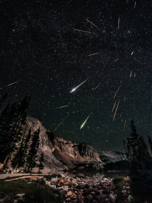 crookedindifference:  Perseid Meteor Shower 2012: David KinghamCredit: David Kingham/David Kingham Photography Night sky watcher David Kingham took this photo of the Perseid meteor shower from Snowy Range in Wyoming on August 12, 2012.