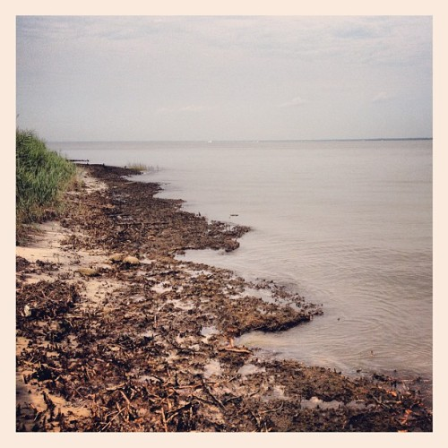 Great South Bay (Taken with Instagram)