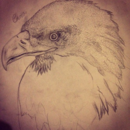 Done for the night #eagle #tattoo #drawing #doodle #sketch #pencil (Taken with Instagram)