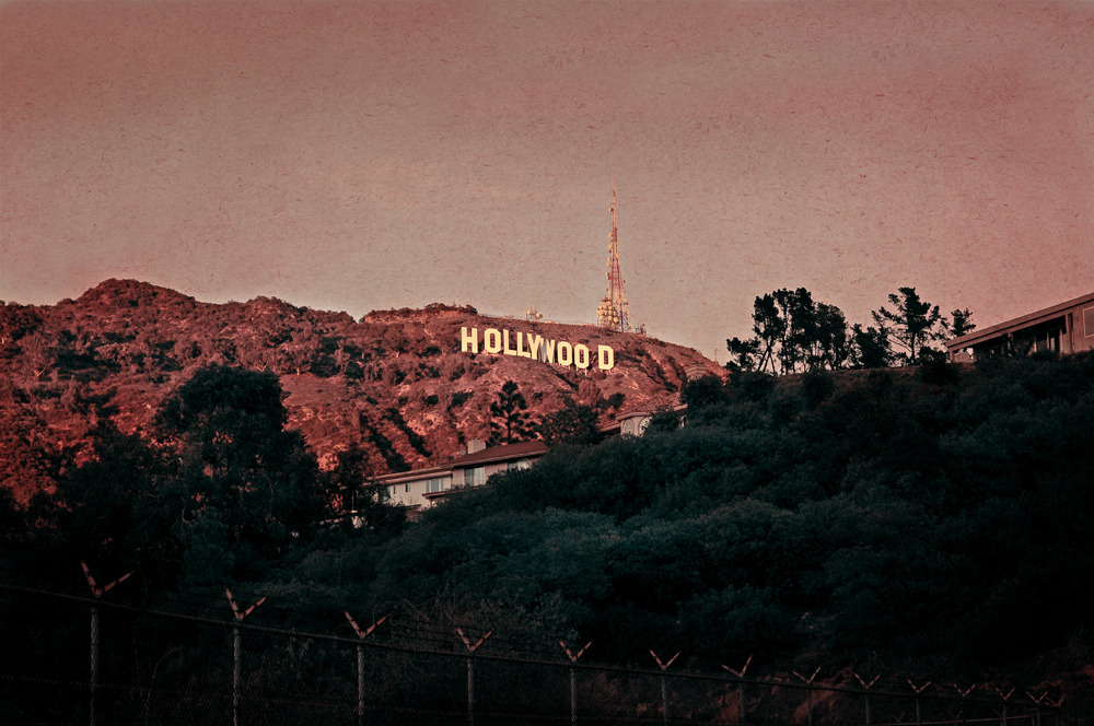 PINKHollywood Hills, January 2011© by Anna Imhof