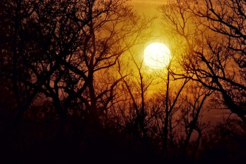 darkface:  Here Comes the Sun IV by ~touch-the-flame