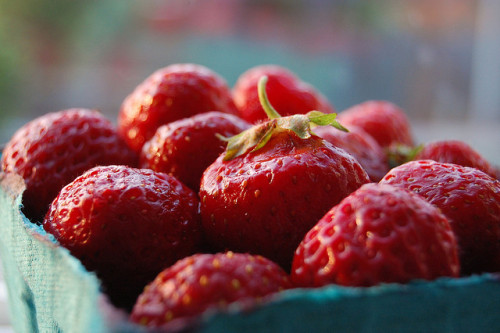 (via Last Hood strawberries of the season | Flickr - Photo Sharing!)