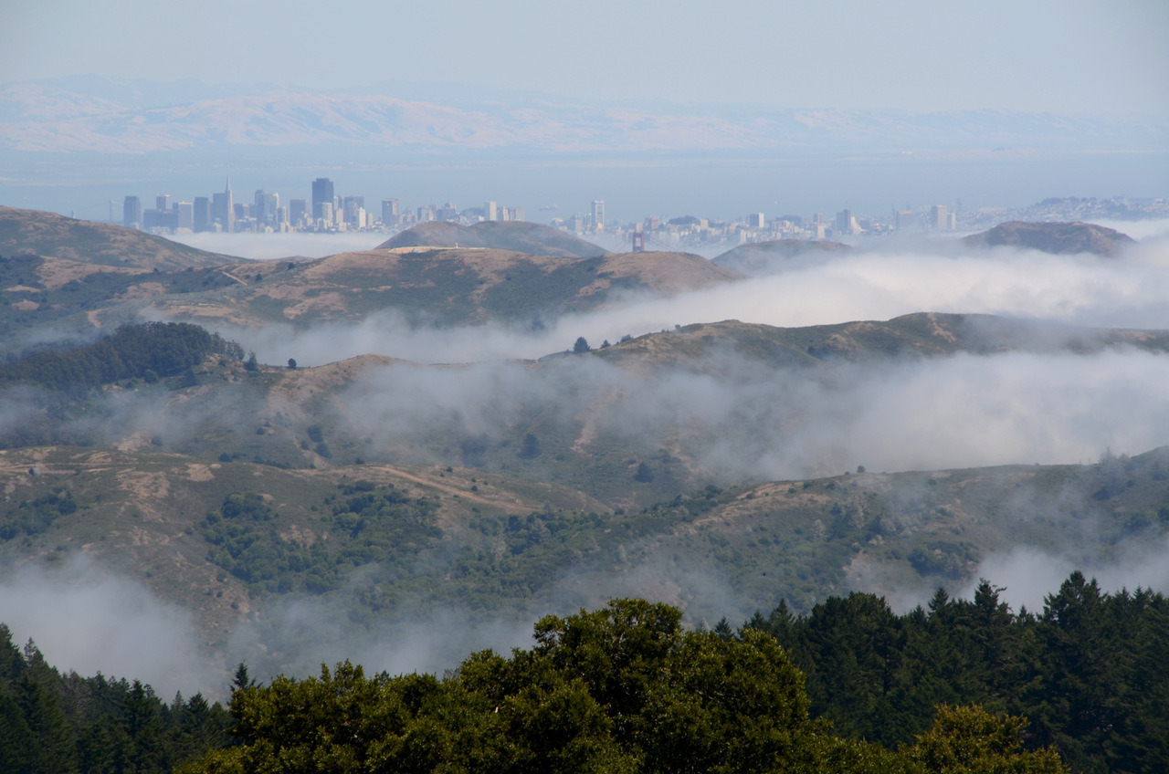 San Francisco from Mount Tam. 7/7/2012
