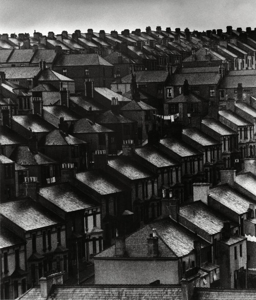 Bill Brandt Sky lightens over the suburbs, London, 1934