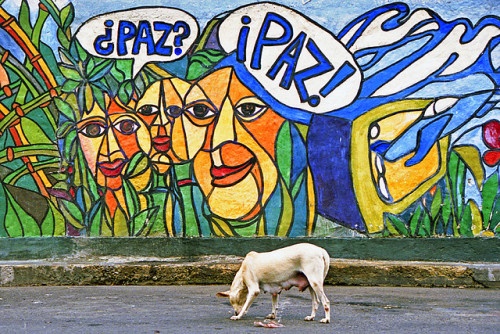 Comunidad del 23 de Enero. Caracas, Venezuela. by MiMundo.org on Flickr.#Caracas | #Photography