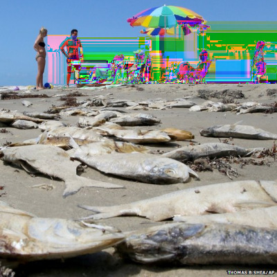 glitchnews:  People sit on Jamaica Beach, Texas, as clean-up crews are expected to start work on Galveston's West End beaches to remove hundreds of thousands of dead fish that washed ashore early on Sunday.
