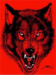 Day in day out the Wolfpac 4 life