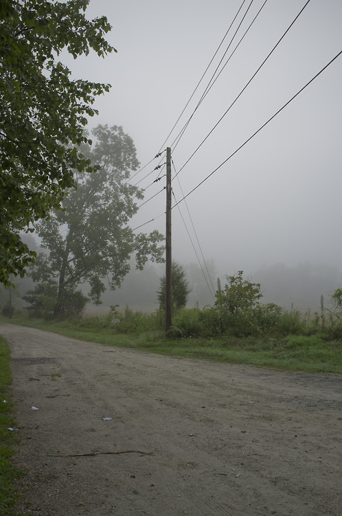 vurginity:  silver-and—gold:  Fog makes my mind seem clear