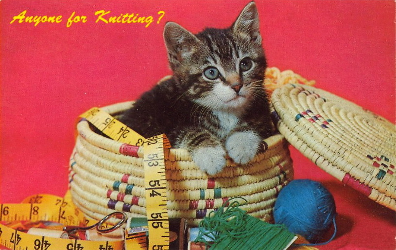 ANYONE FOR KNITTING?