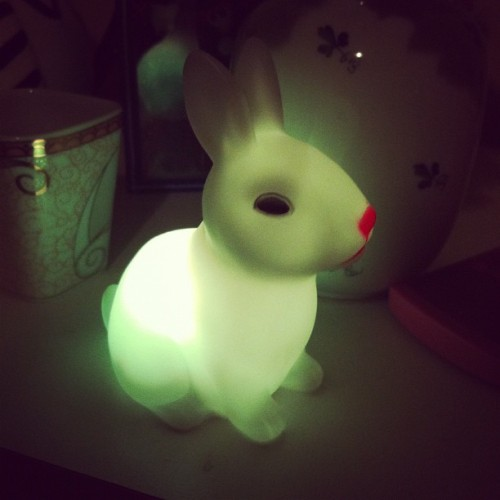 Bunny light? I love eBay #ebay #cute #home #bunny #light #rabbit (Taken with Instagram)