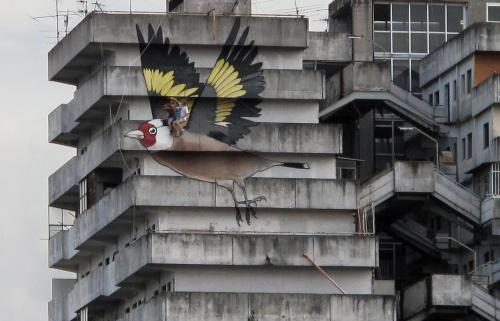 "streetartglobal:  This songbird (""The Cardillo of Scampia"") was painted in 2009 by Simon Jung and Paul and Hanno Schweizer in Naples on a building known for drug dealing. Thanks to Graffiti and Street Art for switching us on to this; its both striking and poignant."